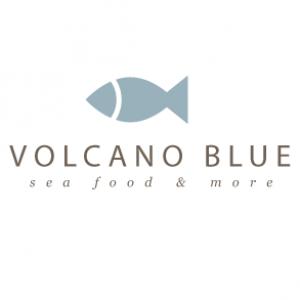 volcanobluelogo2
