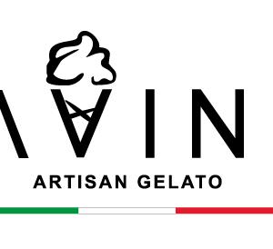 Davinci-Logo_black_small